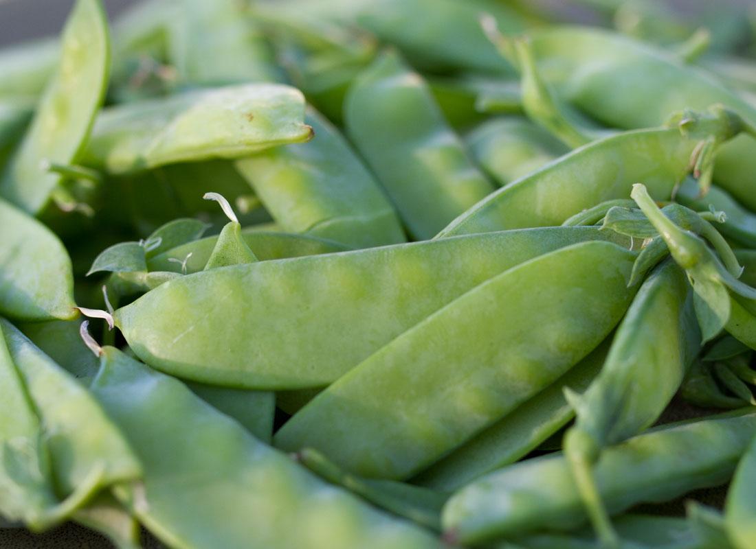 Zone-7-peas-1